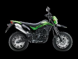 D-Tracker 250 (2013 ONWARDS)