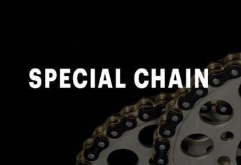 SPECIAL CHAIN