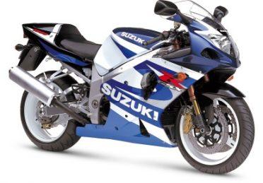 GSX-R 1000(2001-2002)